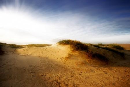 Fanø Strand - Sanddüne