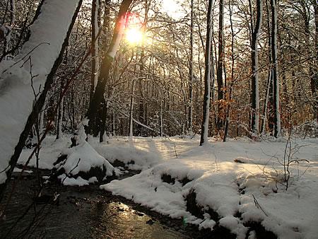 Winter irgendwo zwischen Radevormwald und Hückeswagen