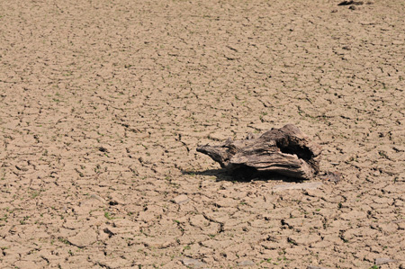 Dürre an der Wuppertalsperre