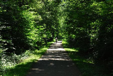 Bahntrasse Radevormwald