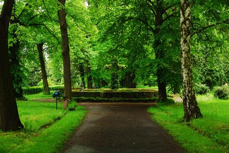 Friedhof Dresden Löbtau