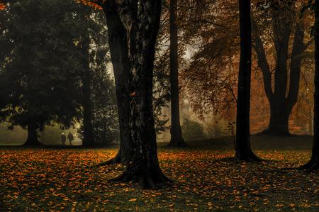 Herbst in Radevormwald - Froweinpark Bergerhof
