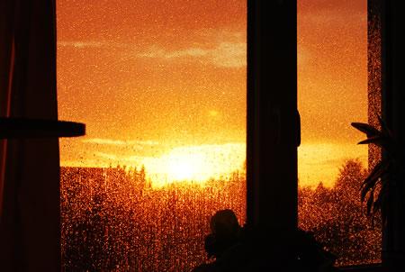 Regen, der an mein Fenster prasselt